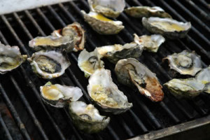 Oysters abound at the Annual San Francisco Oyster & Music Festival (Oysterfest)